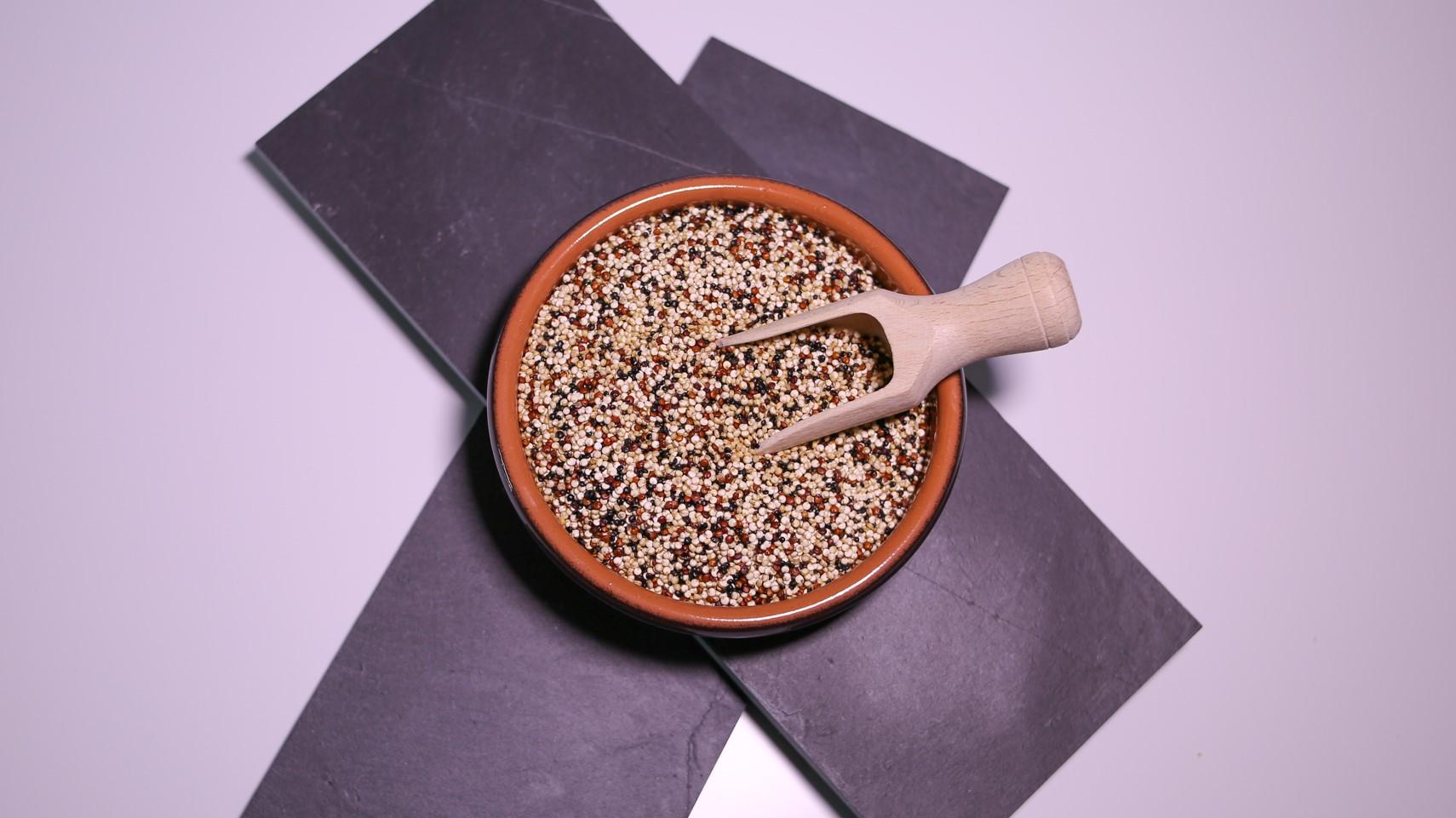 5Z2A6615-Quinoa tricolore